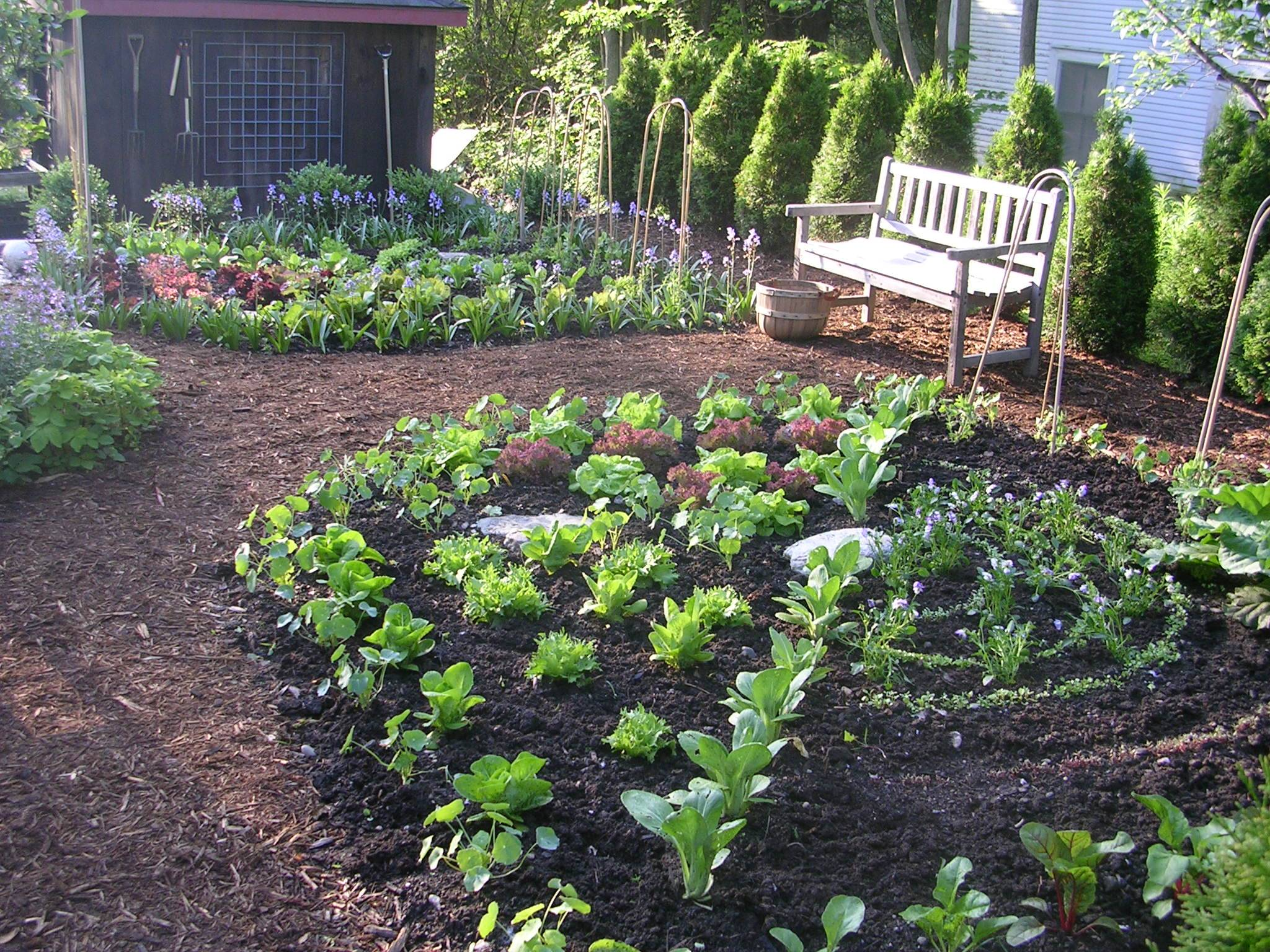 kitchen garden designer ellen ecker ogden great kitchen herb garden ideas for growing herbs
