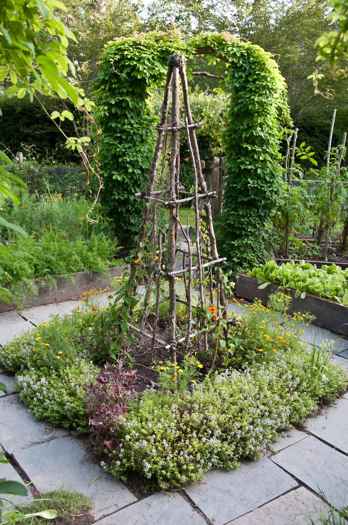 Rustic Garden Trellis
