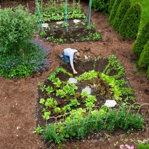 garden design classes and lectures
