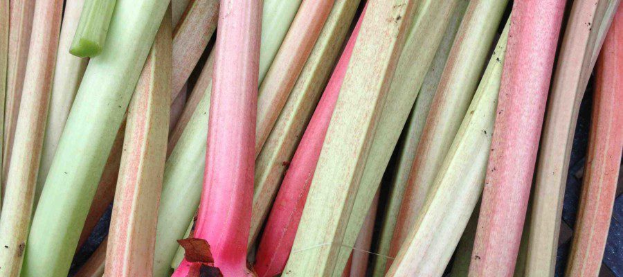Rhubarb Pie ( with ginger and lemon)