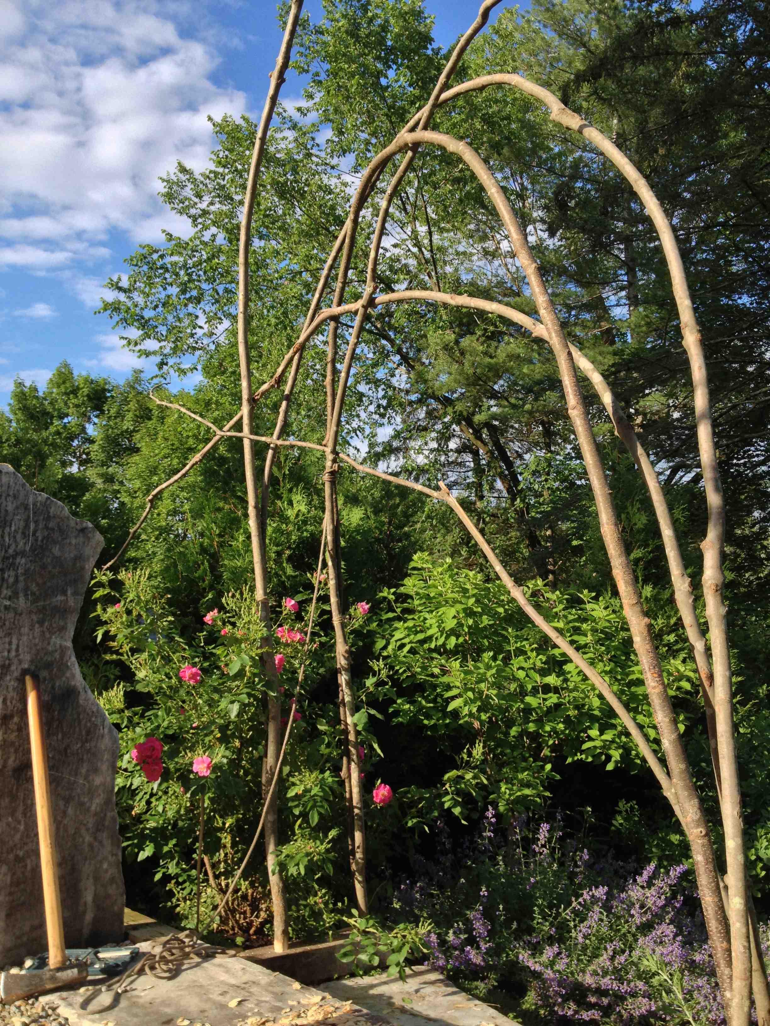 How to build a rustic trellis ellen ecker ogden for Wooden garden trellis designs