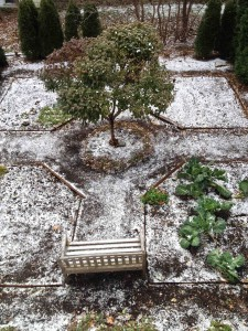 My garden, just as the snow started to fall.