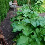 kitchen garden design ellen ogden