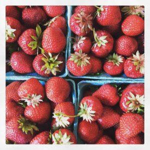 strawberries ellen ogden